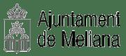 ico_ajuntament_meliana